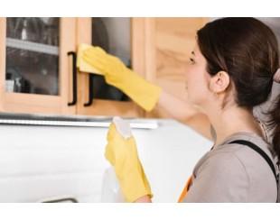 Средства для уборки дома: стоит ли переходить на эко химию?